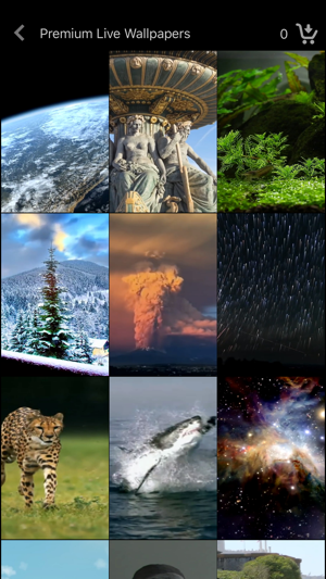 Live Wallpaper Collections iOS App for iPhone and iPad