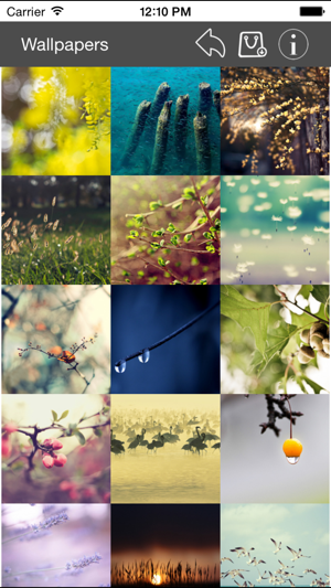 Wallpaper Collection Nature Edition iOS App for iPhone and iPad